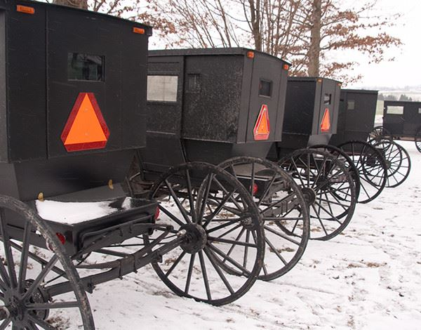 A row of old-fashioned carriages in the snow.